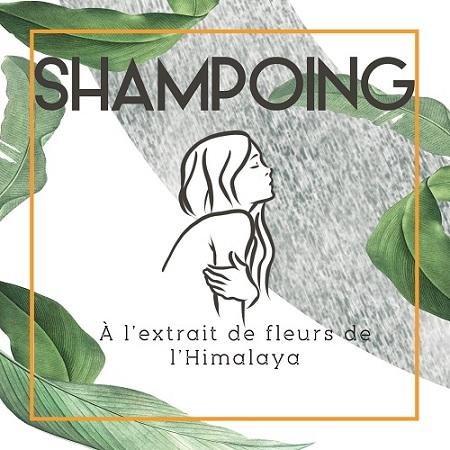 Visuel de la marque d'étiquette adhésive Yetiq pour un produit fictif de shampoing